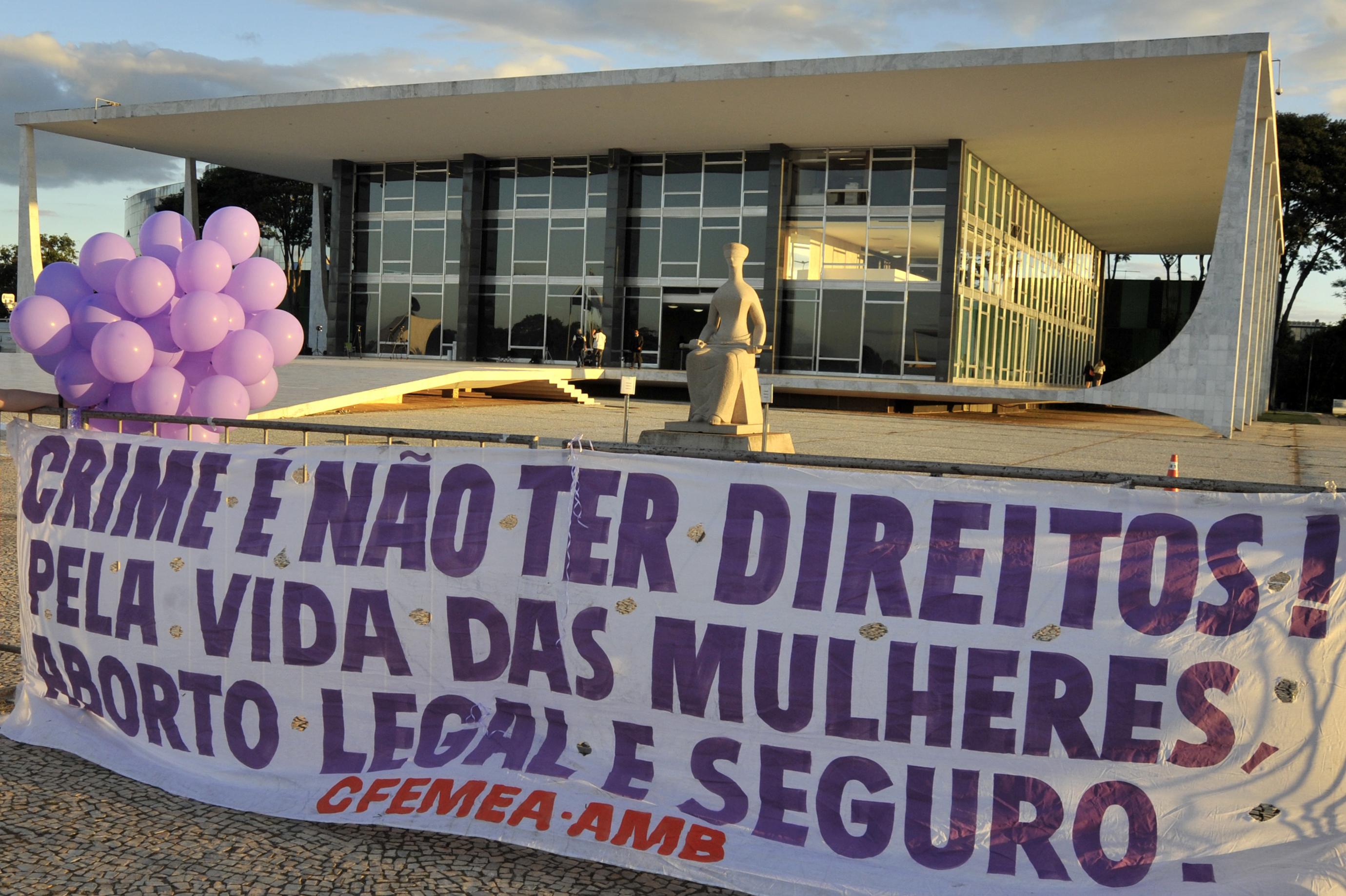 Cartaz do Centro Feminista de Estudos e Assessoria (CFEMEA) em frente ao STF - Foto: Divulgação